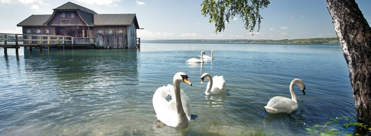 Bootshaus am Ammersee © Jenny Sturm - fotolia.com